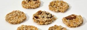 Biocru cookies crackers de graines germées cru raw bio organic lin sésame